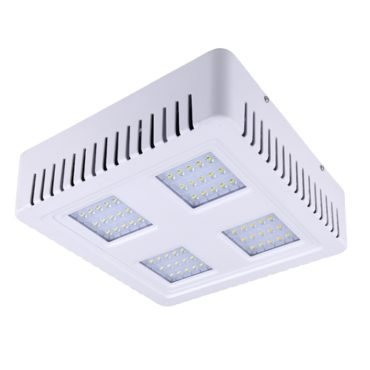 Superior Meanwell Led Driver 5 Years Warranty Led Canopy Light 60w 80w